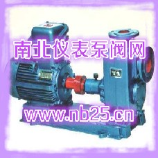 离心油泵,自吸式离心油泵,仪表泵阀网,南北仪表泵阀网