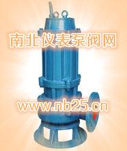 潜水排污泵品牌型号-南北仪表泵阀网-潜水排污泵价格比较图片