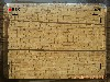 营口工程用木材批发厂家