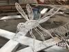 蜻蜓雕塑不銹鋼圓棒編織仿真蜻蜓貴港不銹鋼昆蟲雕塑廠家直銷