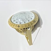 LED防爆泛光灯/20wLED防爆灯/小功率防爆灯图片