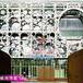 艺术镂空造型幕墙铝单板广东厂家来图定制