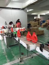 清洁洗涤产品灌装生产线伺服柱塞自动灌装设备