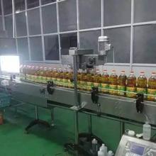 南京食用油灌装机,花生油灌装机图片