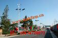 广西靖西市太阳能路灯价格供应6米30W新农村专用路灯找浩峰照明