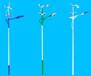 山东济南平阴LED太阳能路灯,高杆灯,庭院灯生产厂家