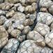 包塑石笼网价格哪里的好?还是瑞尚更好护坡防护河流截流挂网喷浆