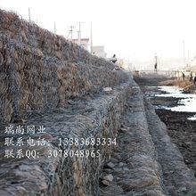 格宾石笼网坡头区格宾石笼网价格&格宾石笼网图片