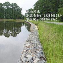 堤坝加固铁丝网#渝北堤坝加固铁丝网#堤坝加固铁丝网批发