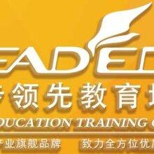 新疆语数外等所有科目辅导小初高一对一辅导班