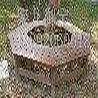 实木木围树椅