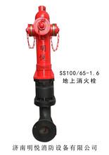 供应SS100/65-1.6地上消火栓