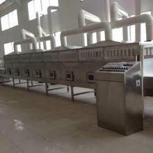 山东科弘微波烘干设备厂家专业生产菊花烘干机生产供应商图片