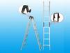 登月梯子两关节梯厂家供应