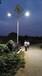 新农村太阳能路灯如何选择质优价廉的厂家-创行业第一品牌,索伦太阳能值得拥有。