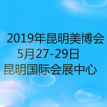 2019年昆明美博会时间地点2019昆明国际美容化妆品展图片