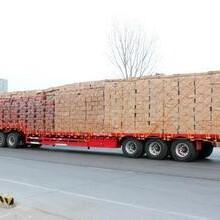 天津到湖南物流货运专线优质服务图片
