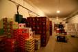 芜湖水果蔬菜保鲜冷藏库建设