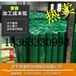 绿化养殖绿色围栏网/浸塑电焊网/铁丝网荷兰网果园围栏护栏网详细参数