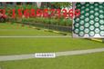 天津植草格停车位绿化主流产品