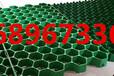 天津植草格,给我们最美的绿化环境