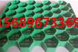 内蒙古HDPE塑料植草格