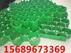 日照塑料植草格生产厂家助力生态梦
