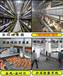 大型自动化养鸡设备——河南金凤鸡笼设备厂家直销