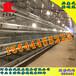 黃石金鳳雞籠自動化養雞設備G28金鳳層疊雞籠