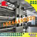 西寧金鳳雞籠3列4層蛋雞養殖設備