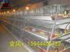 佳木斯市河南金鳳雞籠6層6萬層疊養雞設備最新報價
