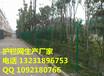 最优惠的双边丝护栏网那里买四川宜宾护栏网厂家价格直销