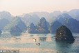 2018年春节陕西铜川到越南世界遗产海上桂林下龙湾、河内、直辖市岘港、会安五天四晚游