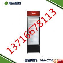 立式单门饮料柜餐厅饮料展示柜冷冻冷饮保鲜柜保鲜饮料展示柜