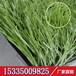 晟林人造草坪厂家直销供应足球场专用人造草坪五人足球场地毯草坪