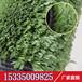 室外仿真草皮墙园林绿化草皮墙面装饰人造草坪地毯草可批发