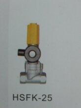 家用dn20电磁阀燃气紧急切断阀图片