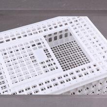 厂家批发塑料大鸡笼子塑料运输鸡笼子结实抗摔塑料鸡笼子图片