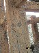 河南省供应水泥仿铜板雕刻、水泥铜板装饰、水泥铜板标牌