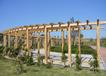 郑州水泥仿护栏、郑州水泥制品、郑州水泥仿木凉亭、水泥仿木制造厂