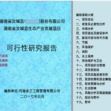 枣阳市可行性�研究报告公司编写图片