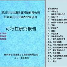 攸县项目申请报告单位全国编写图片