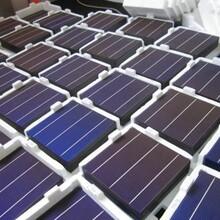 多晶单晶低效太阳能电池片