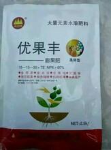 大量元素水溶肥优果丰生产厂家