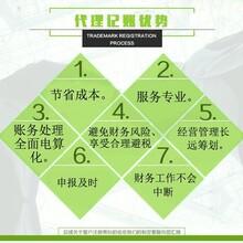 肇庆公司注册有限公司股份公司注册个体工商户注册
