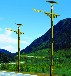 乡村建设云南丽江太阳能路灯飞鸟厂家批发LED太阳能路灯,