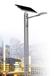 云南红河LED太阳能灯具报价,飞鸟供应太阳能路灯