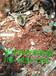 呼伦贝尔废铜回收废铜电缆回收废旧电缆回收价格