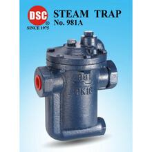 981台湾DSC倒桶式蒸汽疏水阀图片