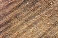 美國巴坦木果皮進口報關事宜作為牧場飼喂原料的優勢